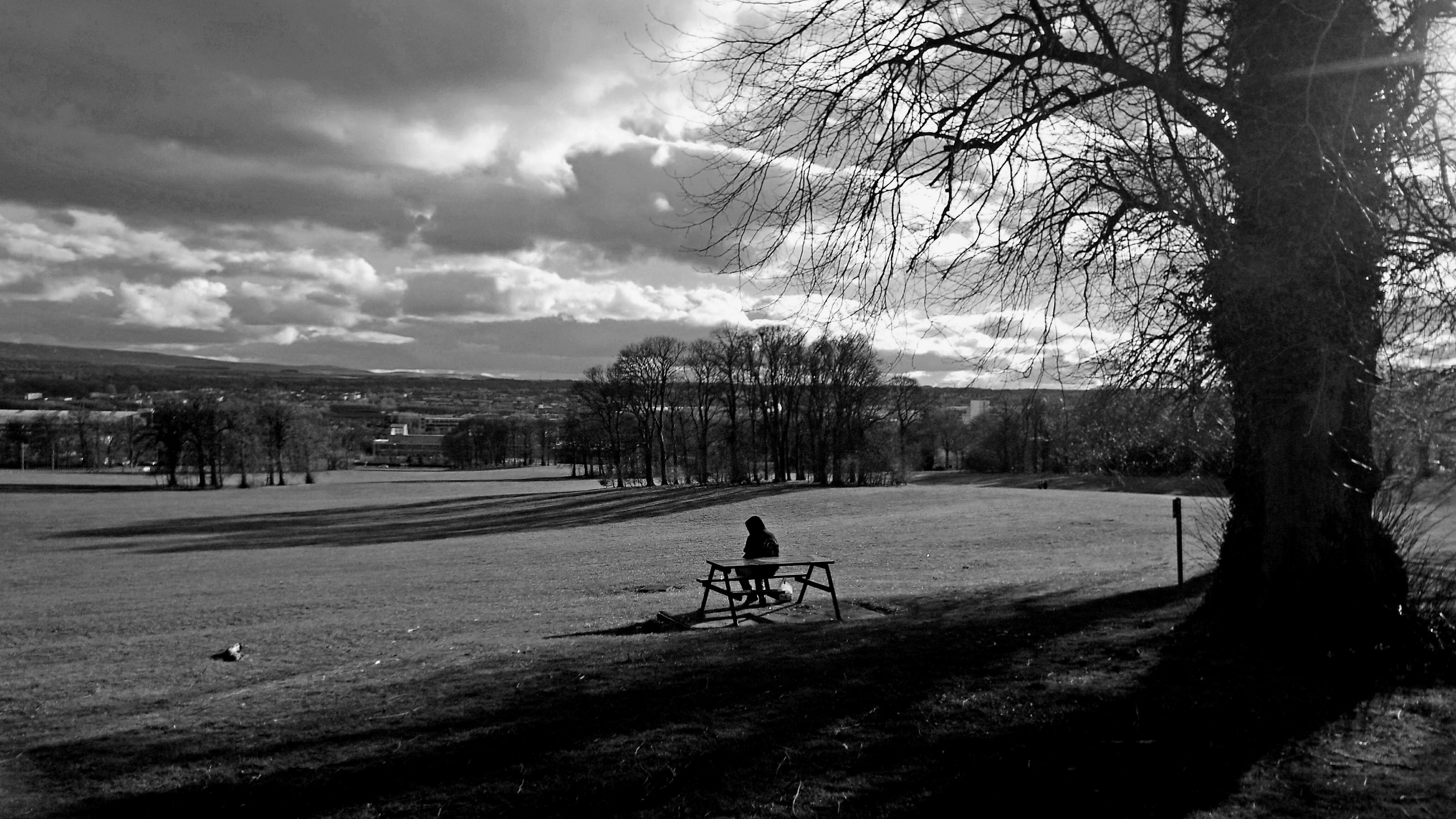 bench-photo